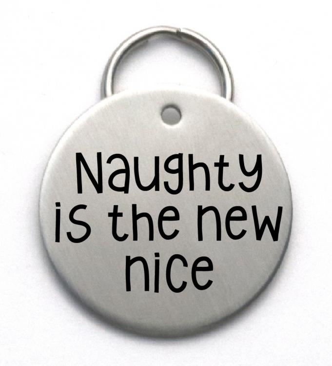 Funny Dog Tag Custom Christmas Pet Id Tag Naughty Is