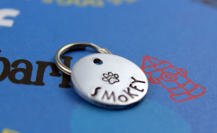 Small customized dog or cat tag