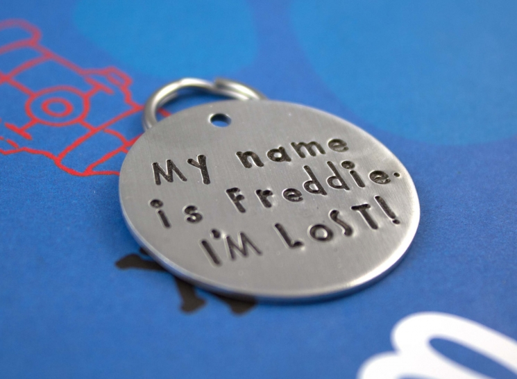 LARGE Customized Dog Tag  Unique Pet Tag -  I'm Lost!