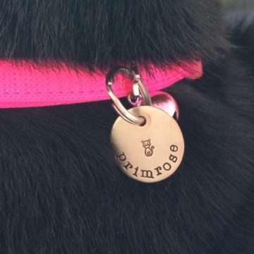 critter bling cat tag