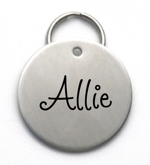 Engraved Stainless Steel Name Tag - Simple Large Dog ID Tag