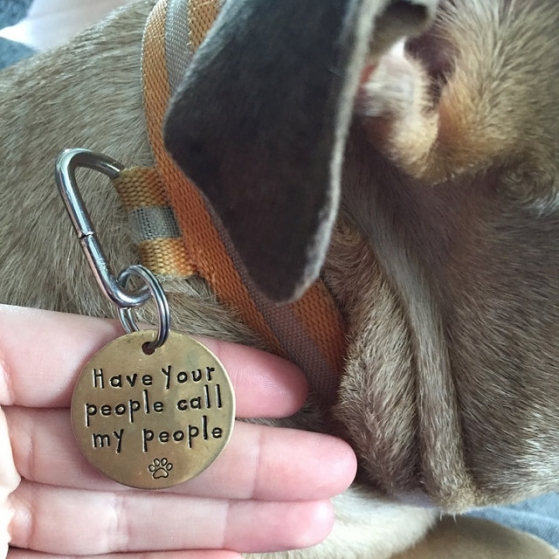 critter bling dog tag